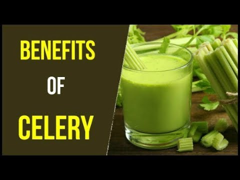 Top 10 Benefits of Celery | Celery and its benefits