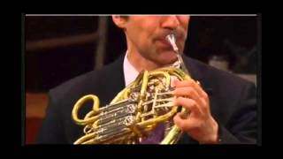 Tchaikovskys 5th Symphony Horn Solo