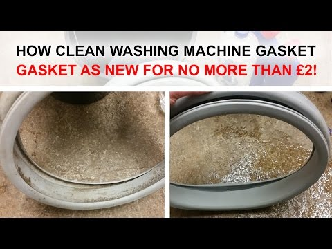 How to clean and remove 100% mould from washing machine door seal gasket