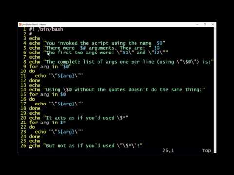 How to Access Command Line Arguments in Bash Shell Scripts