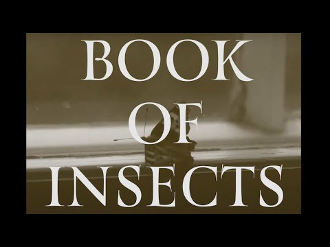 Book of Insects