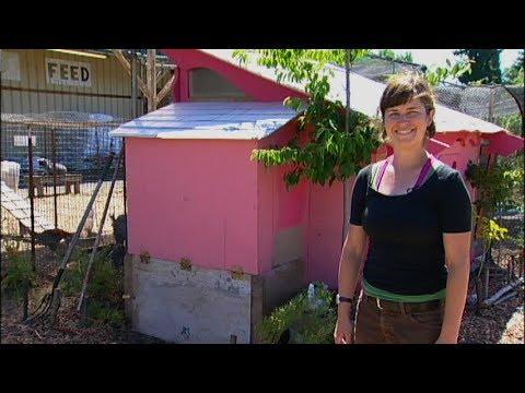Raising Backyard Chickens - Taking Care of Poo
