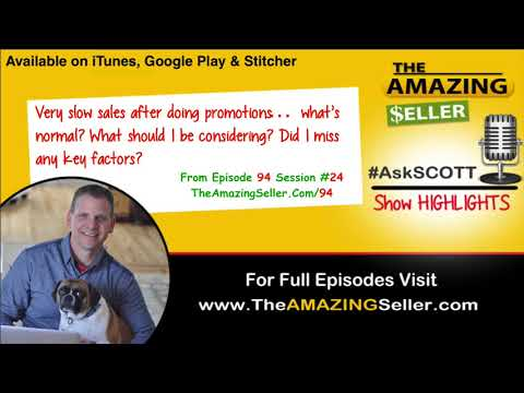 After Doing Promotion I Have Slow Sales, Am I Missing Any Key Factors? TAS #94 The Amazing Seller