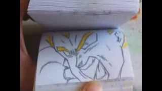 Download Dragon Ball Z Broly vs Vegeta Video