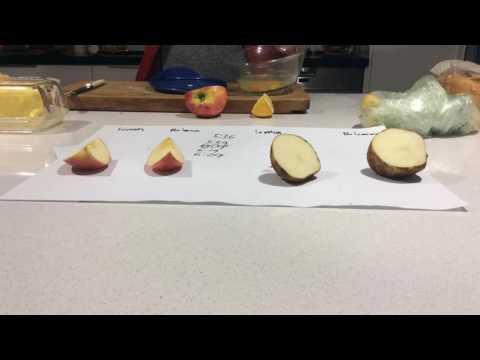 Lemon juice on cut fruit experiment