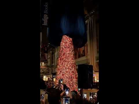 Launch of Tallest Christmas Tree - Toronto CF Eaton Centre  - 24 Nov 2016