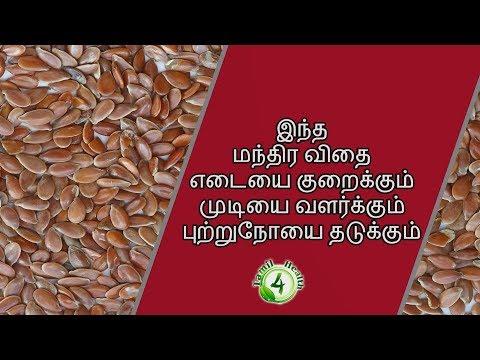 இந்த மந்திர விதை எடை குறைய, முடி வளர, புற்றுநோயை தடுக்க உதவும்  Flax seeds tamil