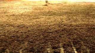 Imam Mahdi Poem - Where are you ? - Be Taha part 2 - ( ENG Subtitles )