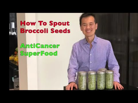 How to Sprout Broccoli Seeds
