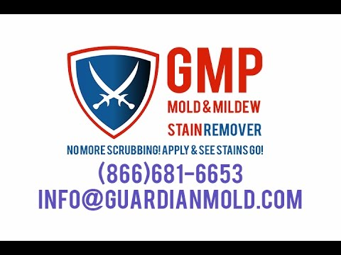 GMP Mold Stain Remover - Spray It On & Watch Mold Stains Disappear
