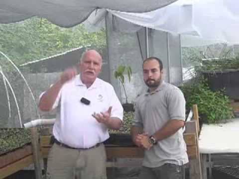 Aquaponics Connect with Charlie Shultz, Murray Hallam.