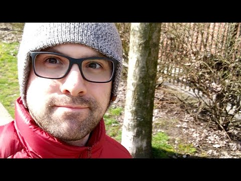 Sunny Day Walking, Chatting About WordPress