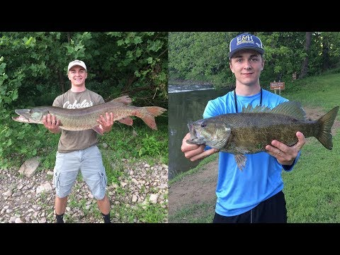 Most Memorable Fish Catches (Fishing Compilation)