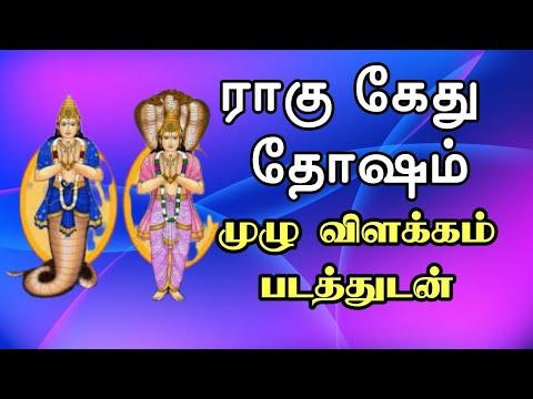 RAHU KETU DOSHAM EXPLAIN IN TAMIL JOTHIDAM/ராகு கேது தோஷம்/Rahu ketu  story in tamil