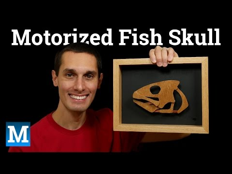 Making a Motorized Fish Skull