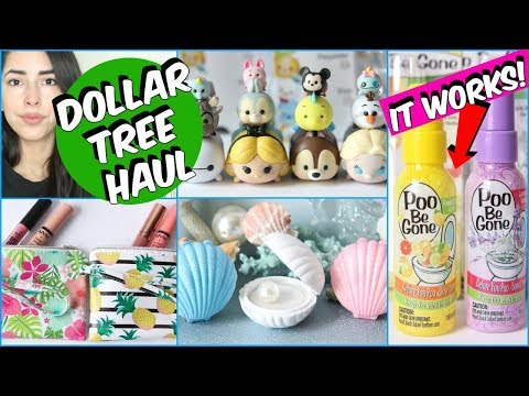 DOLLAR TREE HAUL MAY 2018 NEW ITEMS