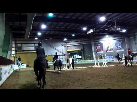 National Western Stock Show 2012 - Denver, Colorado, Mutton Bustin', Horse Jumping, Gambler's Choice