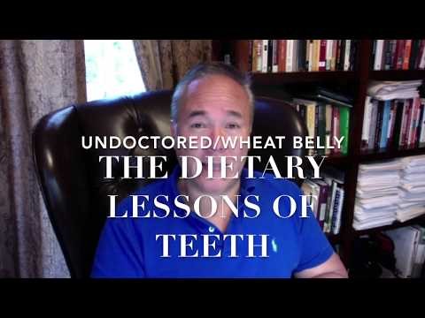 The Dietary Lessons of Teeth