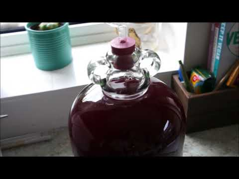 How To Make Blackberry Wine at Home! Part 2 Secondary Fermentation