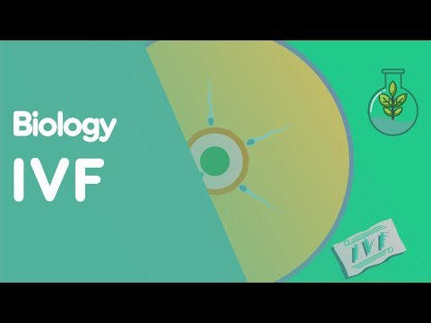 IVF | Biology for All | FuseSchool