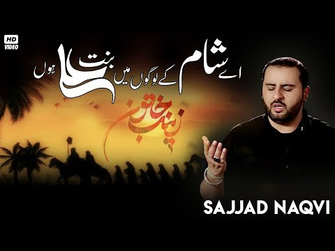 DOWNLOAD Nohay 2018 Zainab س Turdi Rae Mir Hasan Mir 2018-19