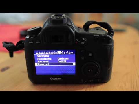 Canon shutter count with Magic Lantern