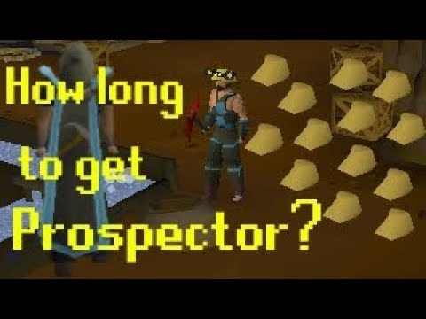 [OSRS] How Long Does it Take to Get Prospector? (And Profits!)