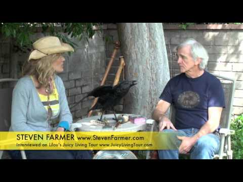 How to connect with spirit animal ? Steven Farmer