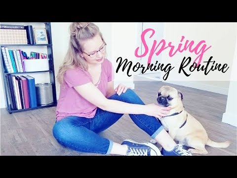 Spring Morning Routine 2018 | Realistic + Productive