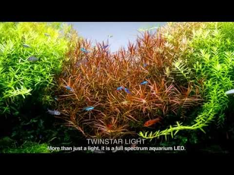 TWINSTAR LIGHT 600E - Full Spectrum aquarium RGB LED