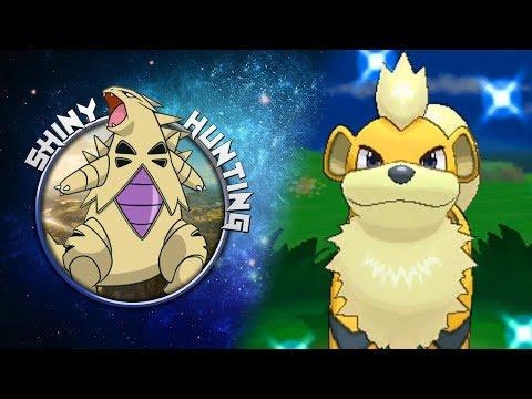 Caninos SHINY (Growlithe) live reaction ! - Shiny Living Dex Quest | Pokemon XY