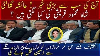 Ayesha Gulalai Shah Mehmood Qureshi Ki Kiya Lagti Hain