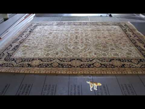 Wool oriental rug Cleaning Urine and Removing the Odor naturally