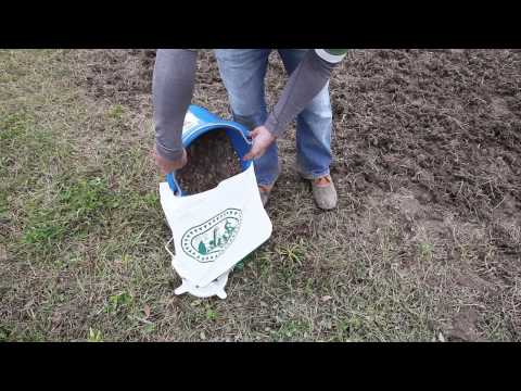 How to Plant a Wildflower Meadow Part II