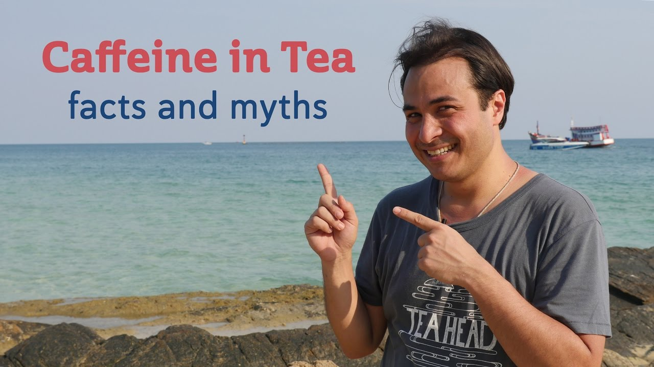 Download Caffeine in Tea - Facts and Myths MP3 Gratis