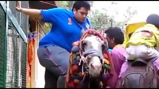 Desi Kid vs Horse - Desi Funny 2015