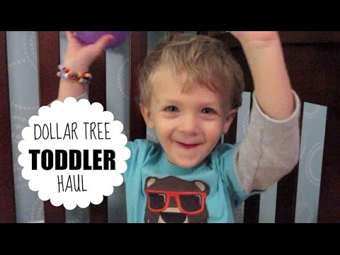 Dollar Tree Toddler Learning Haul!
