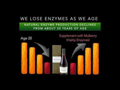 Mulberry Vitality Enzymes by Straits Wholefoods