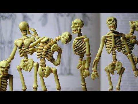 Skeleton of modeling clay