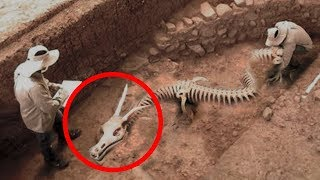 MYSTERIOUS Discoveries Science STILL Can