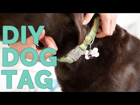 DIY Metal Stamped Dog Tag