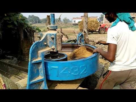 How to make Rice flakes (chura) paddy poha plant