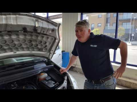 Rat, Mice, Vermin, living in you Car and Steps to Remove and Decontamination