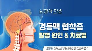 [애니헬스] 뇌경색 단초 '경동맥 협착증' 발병 원인 & 치료법