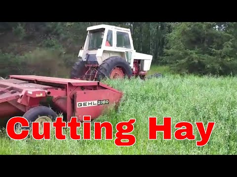 First Hay Cutting on (New Field) (2017)
