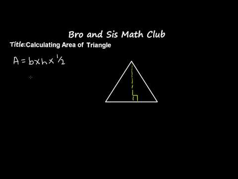 6th Grade Math Calculating Area of Triangle