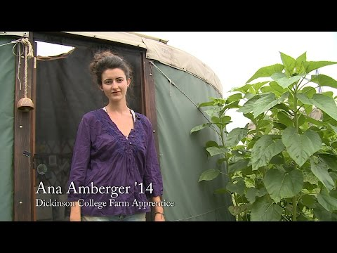 Living in a Yurt - Overview