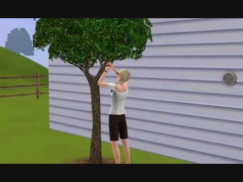 Sims 3 - How To Garden
