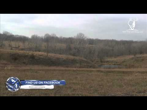 Whitetail South - a 95 acre parcel at Otter Creek - whitetail hunting land for sale in illinois