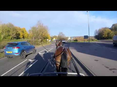 Kenny goes to town (carriage driving) - Barry Hook, Horse Drawn Promotions